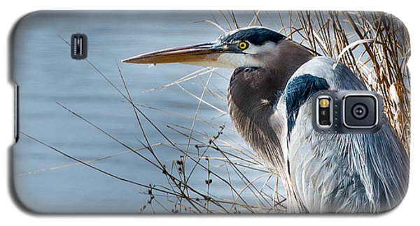 Blue Heron At Pond Galaxy S5 Case