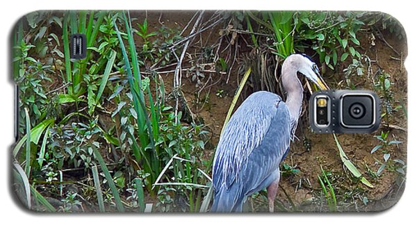 Galaxy S5 Case featuring the photograph Blue Heron by Brian Williamson