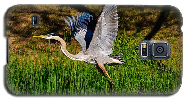 Blue Heron In Flight Galaxy S5 Case