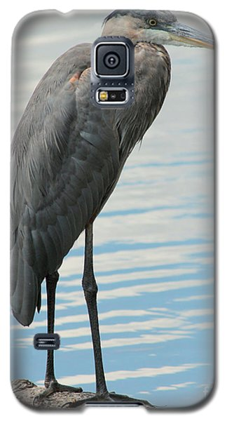 Galaxy S5 Case featuring the photograph Blue Heron  by Kenny Glotfelty