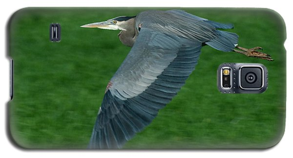 Galaxy S5 Case featuring the photograph Blue Heron by Rod Wiens