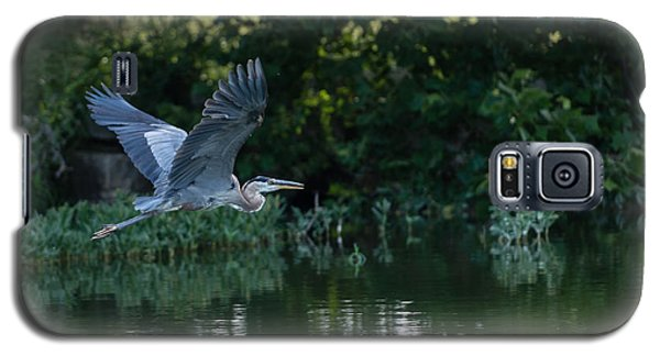 Blue Heron Take-off Galaxy S5 Case