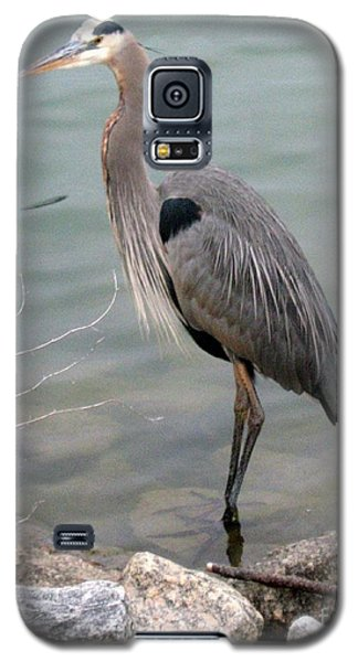 Galaxy S5 Case featuring the photograph Blue Heron by Wendy Coulson