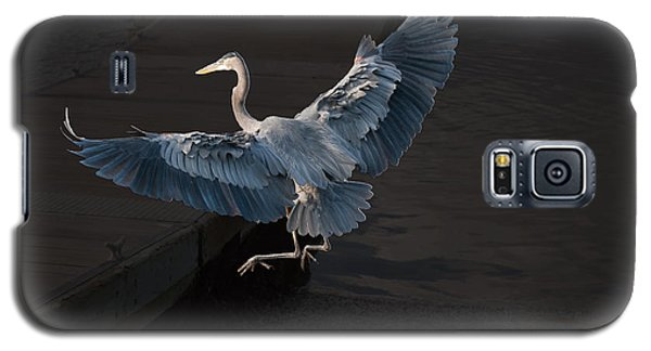 Blue Heron Wil 590 Galaxy S5 Case by G L Sarti