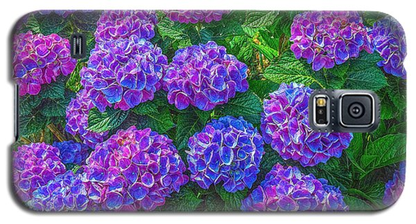 Galaxy S5 Case featuring the photograph Blue Hydrangea by Hanny Heim