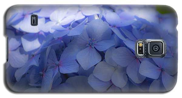 Blue Hydrangea One Galaxy S5 Case