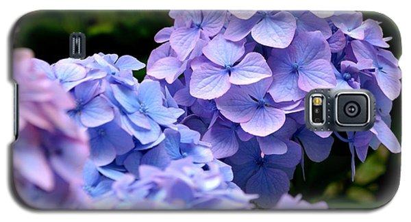 Blue Hydrangea Galaxy S5 Case