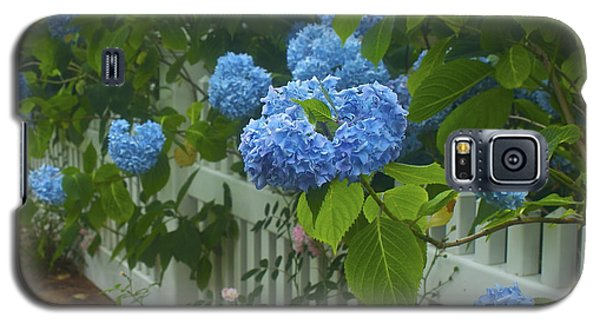 Galaxy S5 Case featuring the photograph Blue Hydrangeas by Amazing Jules