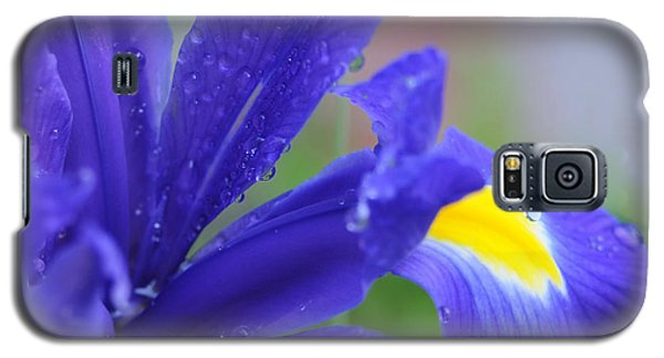 Galaxy S5 Case featuring the photograph Blue Iris by Haleh Mahbod