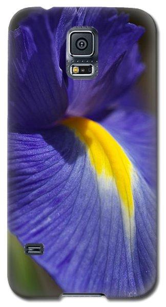Blue Iris With Yellow Galaxy S5 Case