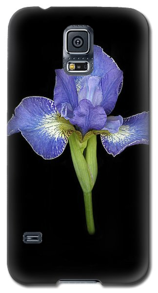 Blue Japanese Iris Galaxy S5 Case