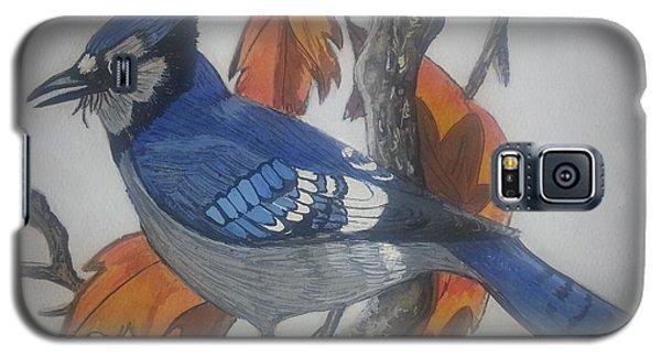 Blue Jay At Fall Galaxy S5 Case