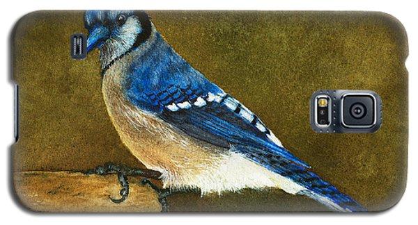 Blue Jay Galaxy S5 Case by Nan Wright