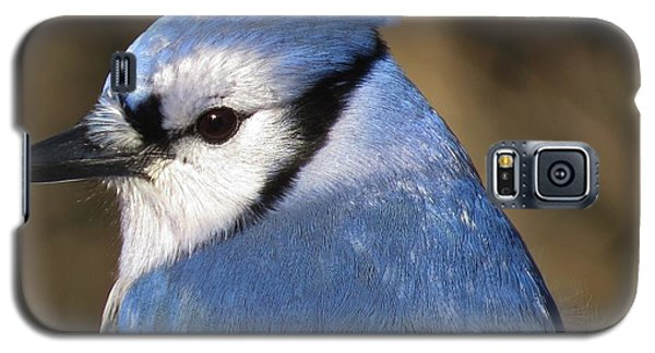 Blue Jay Profile Galaxy S5 Case