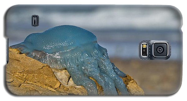 Blue Jellyfish 02 Galaxy S5 Case