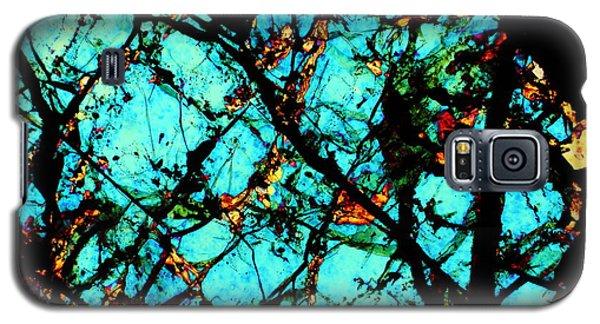 Blue Lagoon Galaxy S5 Case