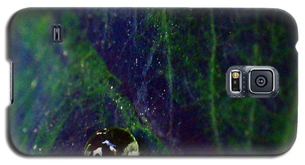 Blue Leaf Galaxy S5 Case