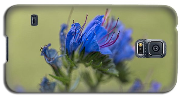 Galaxy S5 Case featuring the photograph Blue by Leif Sohlman