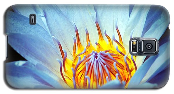 Blue Lotus Galaxy S5 Case by Cynthia Guinn