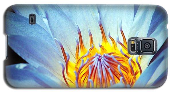 Blue Lotus Galaxy S5 Case