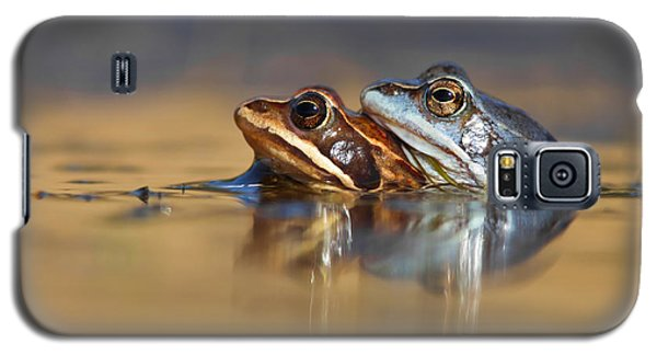 Blue Love ... Mating Moor Frogs  Galaxy S5 Case