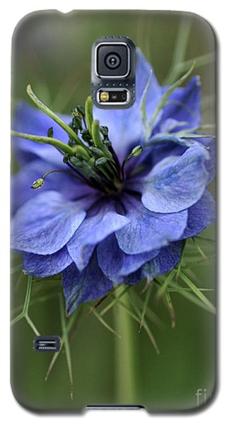 Galaxy S5 Case featuring the photograph Blue Love by Joy Watson