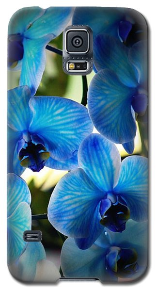 Blue Monday Galaxy S5 Case