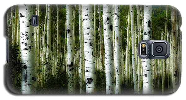 Galaxy S5 Case featuring the photograph Blue Mood Aspens I by Lanita Williams