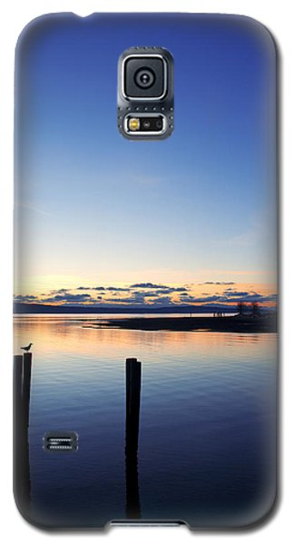Blue Myrtle Galaxy S5 Case