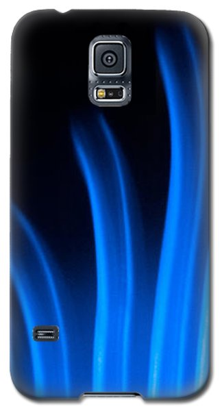 Blue Palm Galaxy S5 Case