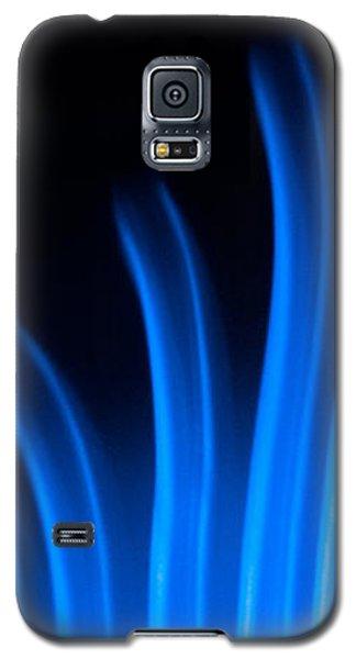 Blue Palm Galaxy S5 Case by Darryl Dalton