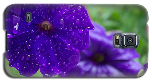 Blue Pansies After A Rain Galaxy S5 Case