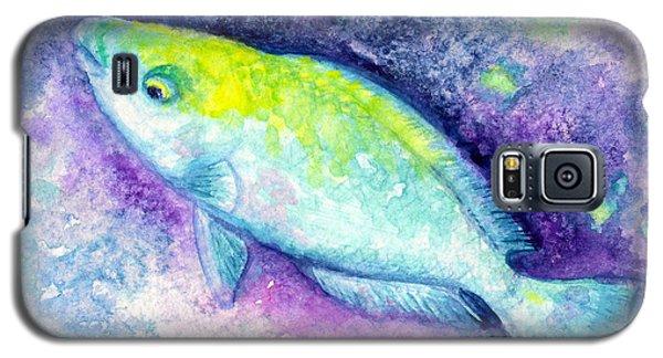 Blue Parrotfish Galaxy S5 Case