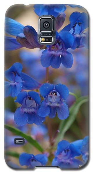Blue Penstemon Galaxy S5 Case