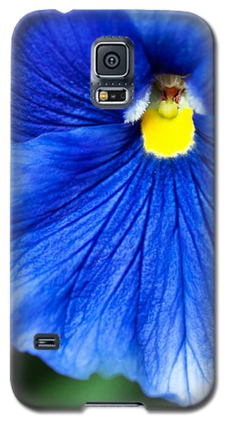 Galaxy S5 Case featuring the photograph Blue Petal by Crystal Hoeveler