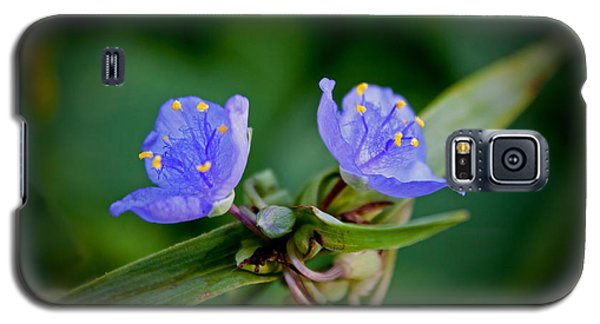 Galaxy S5 Case featuring the photograph Blue Petals by Jean Haynes