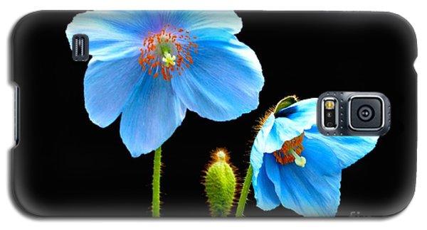 Blue Poppy Flowers # 4 Galaxy S5 Case