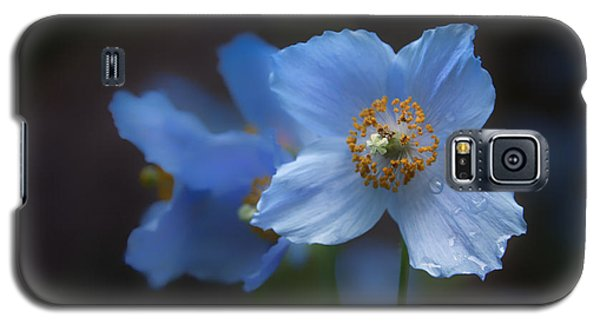 Blue Poppy Galaxy S5 Case
