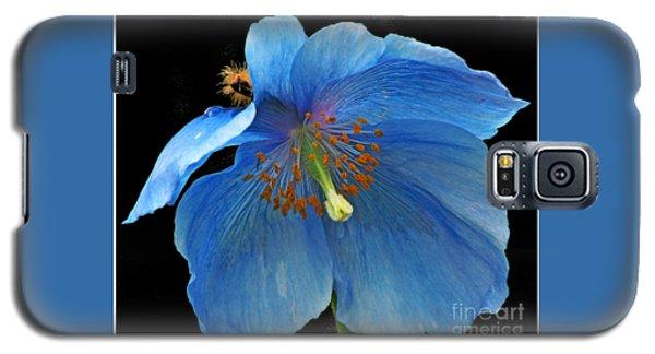 Blue Poppy On Black Galaxy S5 Case