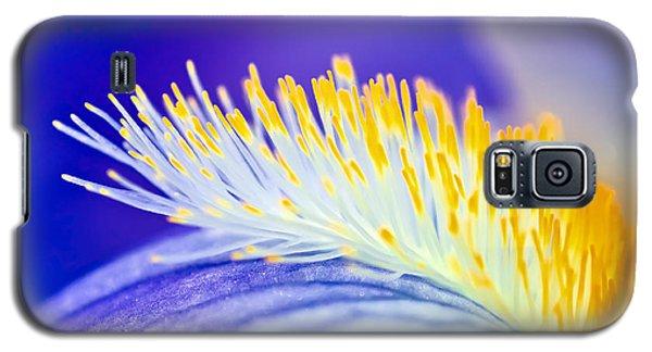 Blue Rapsody Galaxy S5 Case