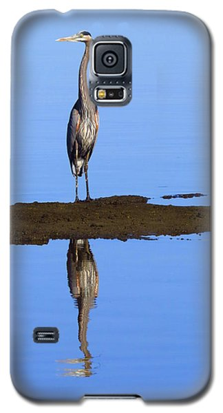 Galaxy S5 Case featuring the photograph Blue Reflections by Phyllis Beiser