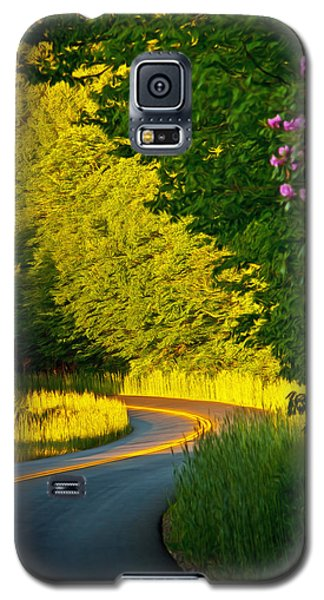 Blue Ridge Afternoon Galaxy S5 Case by John Haldane
