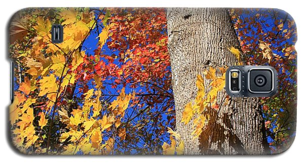 Galaxy S5 Case featuring the photograph Blue Ridge Parkway Fall Foliage-north Carolina by Mountains to the Sea Photo
