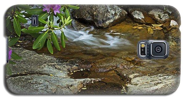 Galaxy S5 Case featuring the photograph Blue Ridge Stream by Robert Pilkington