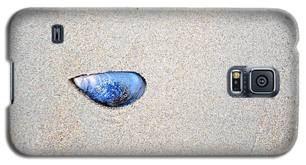 Galaxy S5 Case featuring the photograph Blue Shell by Randi Grace Nilsberg