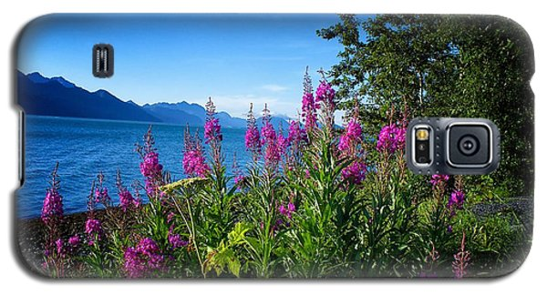 Blue Skies Seward Alaska Galaxy S5 Case