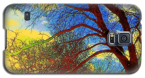 Galaxy S5 Case featuring the photograph Blue Sky by Jodie Marie Anne Richardson Traugott          aka jm-ART