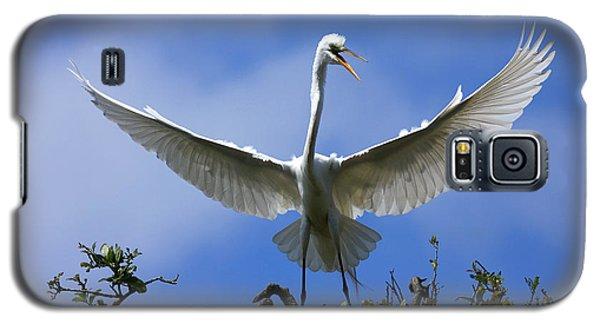 Galaxy S5 Case featuring the photograph Blue Sky Landing by John F Tsumas