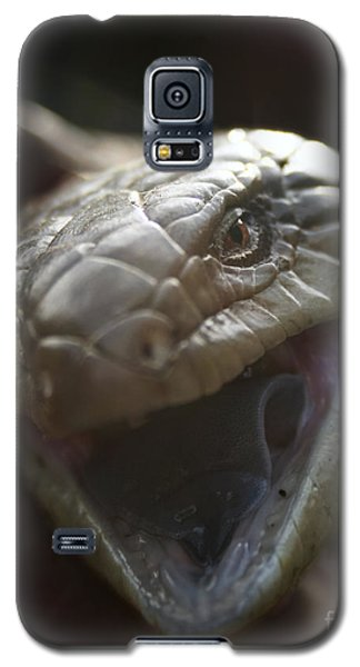 Blue Tongue Lizard Galaxy S5 Case