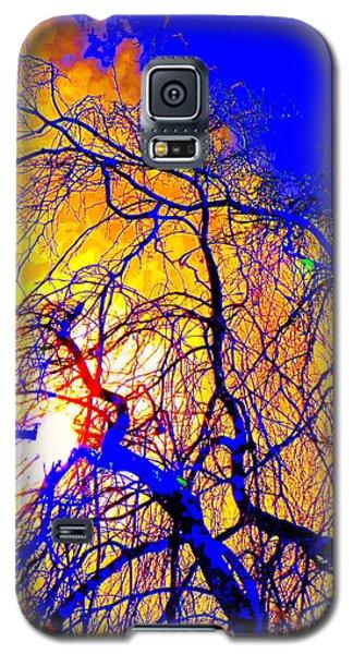 Galaxy S5 Case featuring the photograph Blue Trees by Jodie Marie Anne Richardson Traugott          aka jm-ART